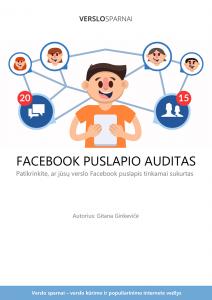 Facebook puslapio auditas